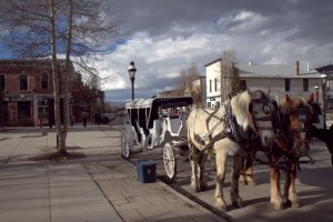 Horse drawn carriages in downtown Breck
