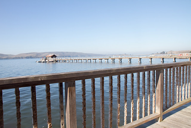 Weekend Escape To Nick S Cove In Tomales Bay The Perfect