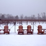 Dreamy grounds of Inniskillin after a fresh snowfall