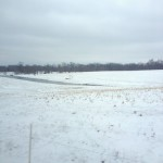 Snowy, grey March countryside in Bourbon Country