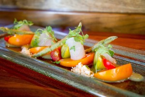 Heirloom tomatoes & albacore tuna