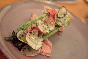 Grilled little gems lettuces with radish & duck liver mousse