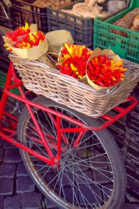 Chilis on a bike at Campo dei Fiori market in Rome