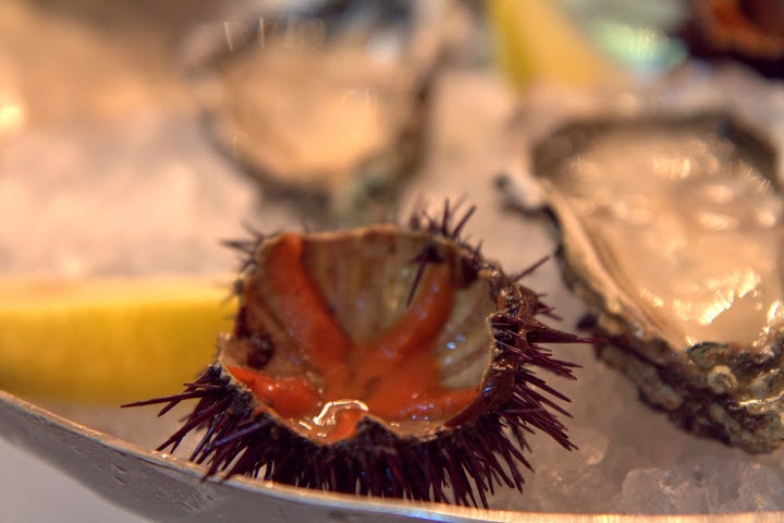 Perfection: urchin from the spiny shell and oysters at Il San Lorenzo