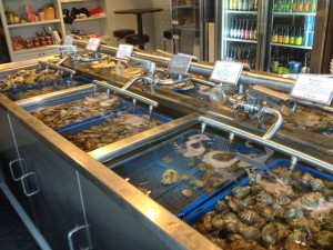 Taylor's Shellfish oysters & more