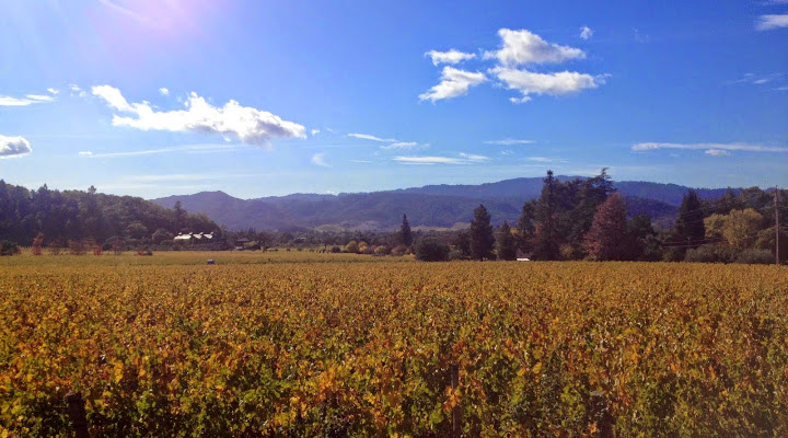 Savoring fall in Napa Valley