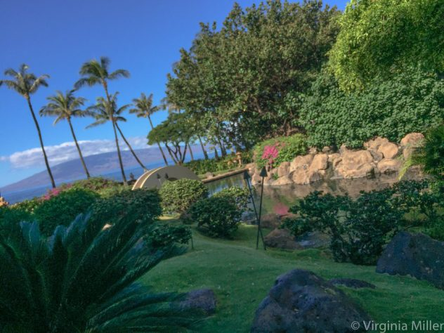 10 Places to Eat & Stay in West Maui Now | The Perfect Spot