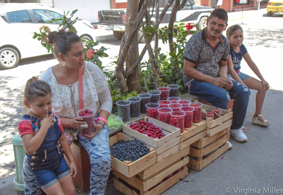 Roadside-Fruit-Puerto-Vallarta-Copyright-Virginia-Miller.jpg